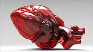 پاورپوینت معرفی مهندسی پزشکی