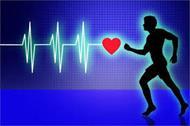 پاورپوینت سازگاری های قلبی عروقی در ورزش