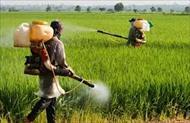 پاو وینت آفت کش ها و کنترل شیمیایی آفات